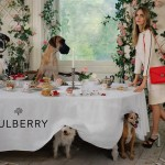 Cara Delevingne : sa nouvelle campagne pour Mulberry