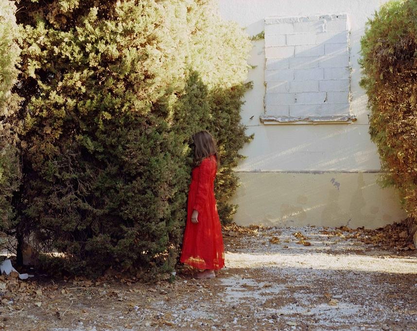 3. WILD GRASS, 2006 © KATE BARRY, GALERIE CINEMA ANNE-DOMINIQUE TOUSSAINT