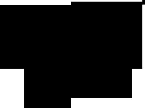calvi-logovec