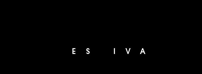 name-festival-logo modzik