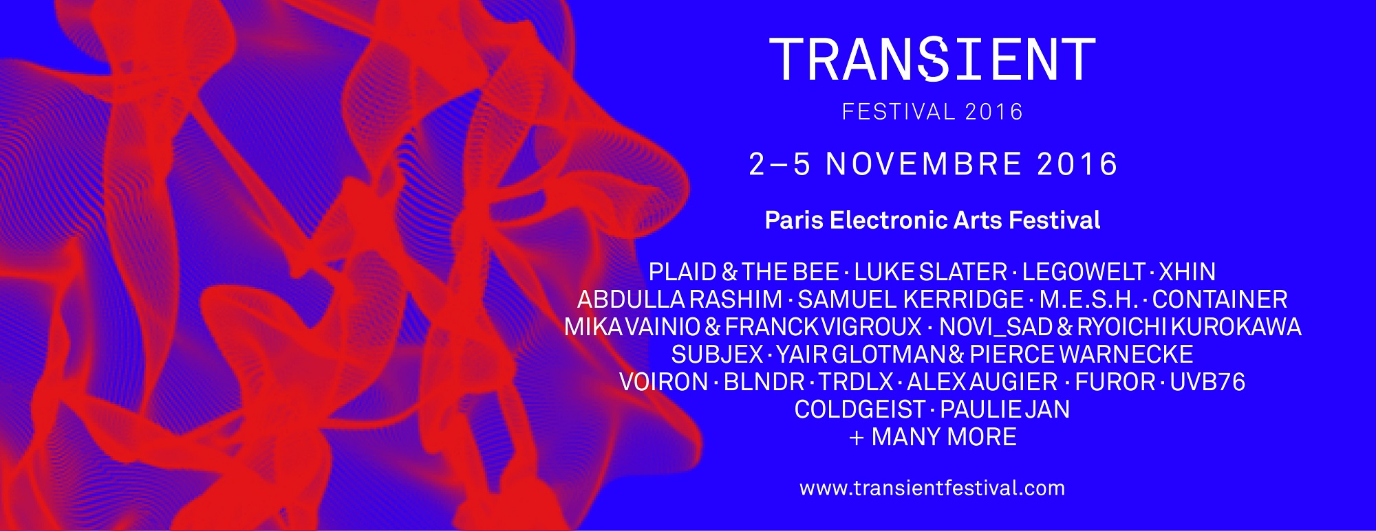 transient festival modzik