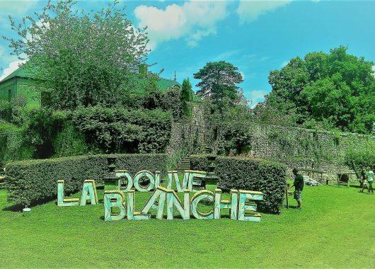 douve blanche festival modzik