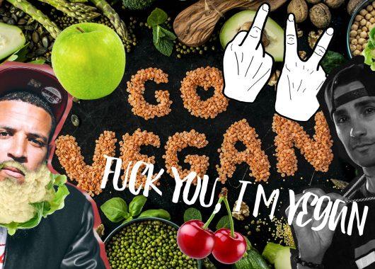 Vegan Rap Modzik